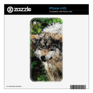 Abstract wolf painting skin for iPhone 4S