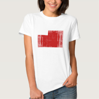 Abu Dhabi Flag T-shirt