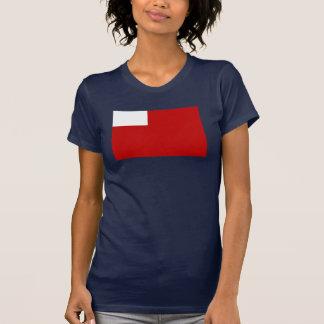 Abu Dhabi Flag T-shirts
