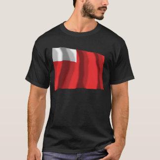 Abu Dhabi Waving Flag T-Shirt