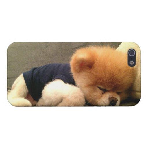 Abucheo iPhone 5 Cobertura