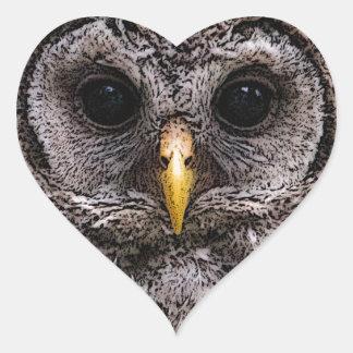 Abucheo - Owlet 2014 de Owlwatch Pegatina De Corazón