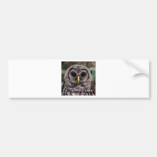 Abucheo - Owlet 2014 de Owlwatch Pegatina Para Auto