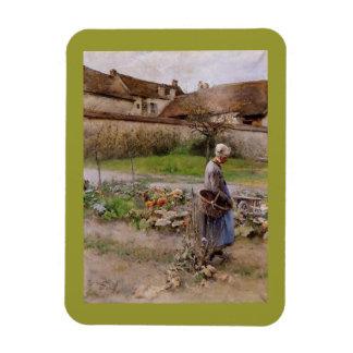 Abuela y cosecha en octubre iman de vinilo