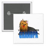 Abuelo del perro de Yorkshire Terrier Pin