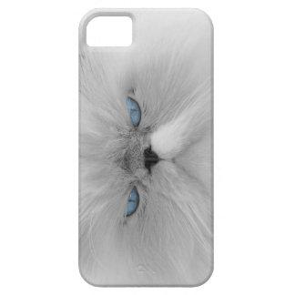 Abuelo malvado del gato gruñón iPhone 5 carcasas