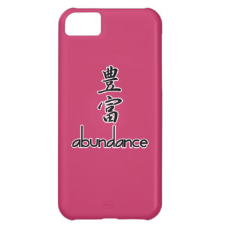 Abundance and Riches, in Kanji Case For iPhone 5C