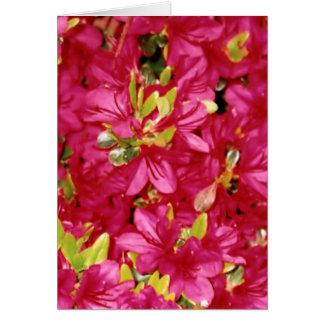 Abundant Azaleas Vertical Greeting Card