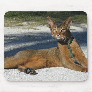 Aby Cat Mousepad