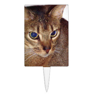 Abyssinian 2.png cake topper