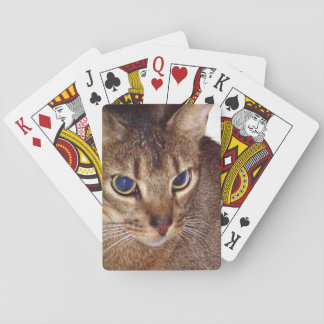 Abyssinian 2.png playing cards