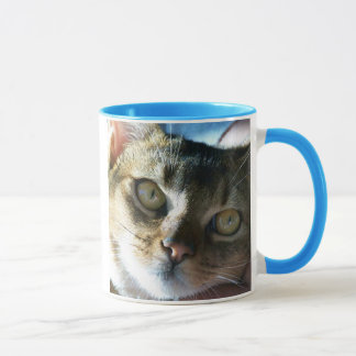 Abyssinian Blue Male Cat Mug