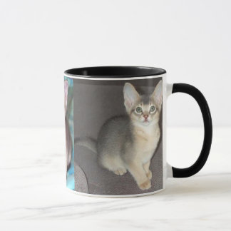 Abyssinian blue male kitten mug