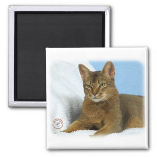 Abyssinian Cat 9Y009D-020 Magnets