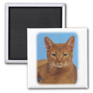 Abyssinian Cat 9Y009D-046 Fridge Magnet