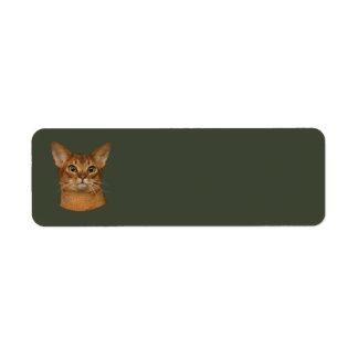abyssinian cat label
