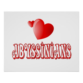 Abyssinian Cat Love Posters