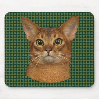 abyssinian cat mouse pad