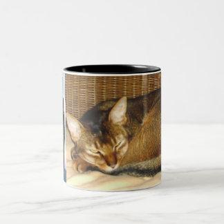 Abyssinian Cat Ruddy Fur Two-Tone Coffee Mug
