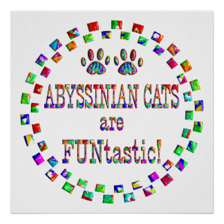 Abyssinian Cats are FUNtastic Print