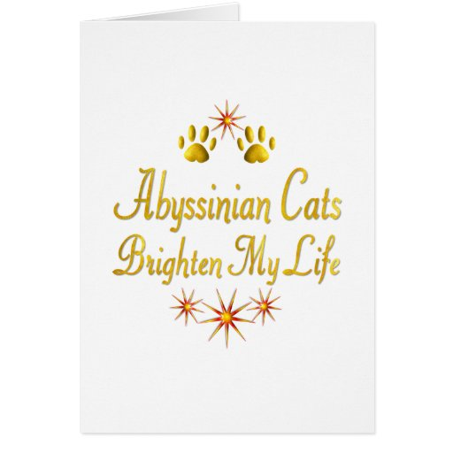 Abyssinian Cats Brighten My Life Greeting Card