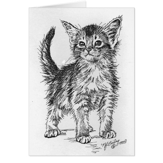 Abyssinian Kitten Pen and Ink Card