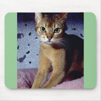 Abyssinian Mouse Pad