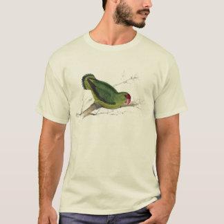 Abyssinian Parrakeet by Edward Lear T-Shirt
