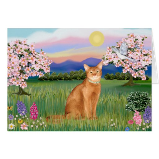 Abyssinian (red 18) - Blossoms Greeting Card