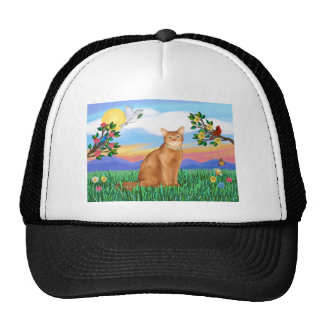 Abyssinian (red 18) - Bright Life Mesh Hats