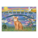Abyssinian (red 18) - Sunrise Lilies Greeting Card