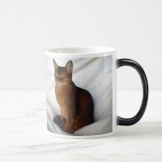 Abyssinian Ruddy Female Cat Mug