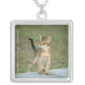 Abyssinian Silver Plated Necklace