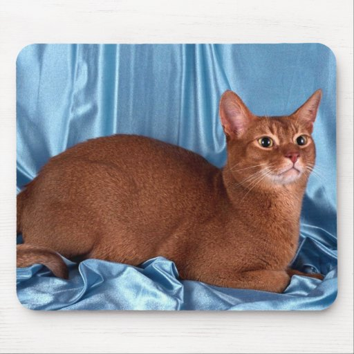 Abyssinian, sorrel mouse pad