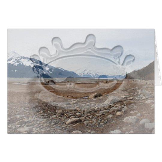 AC Alaskan Coast Card