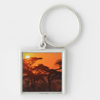 Acacia forest silhouetted at sunset, Tarangire Keychains
