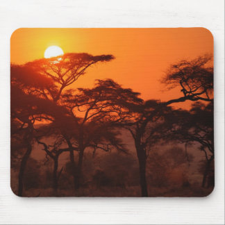 Acacia forest silhouetted at sunset, Tarangire Mouse Pad