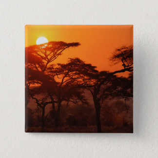 Acacia forest silhouetted at sunset, Tarangire Pinback Button