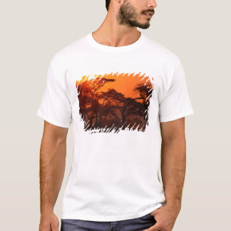 Acacia forest silhouetted at sunset, Tarangire T-Shirt
