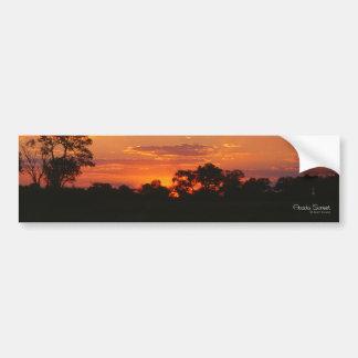 Acacia Sunset Bumper Stickers