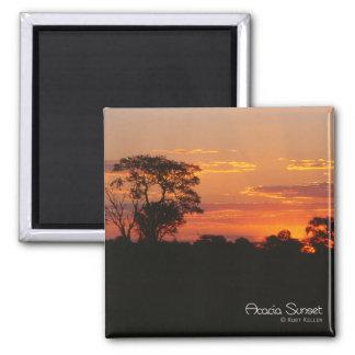 Acacia Sunset Magnet
