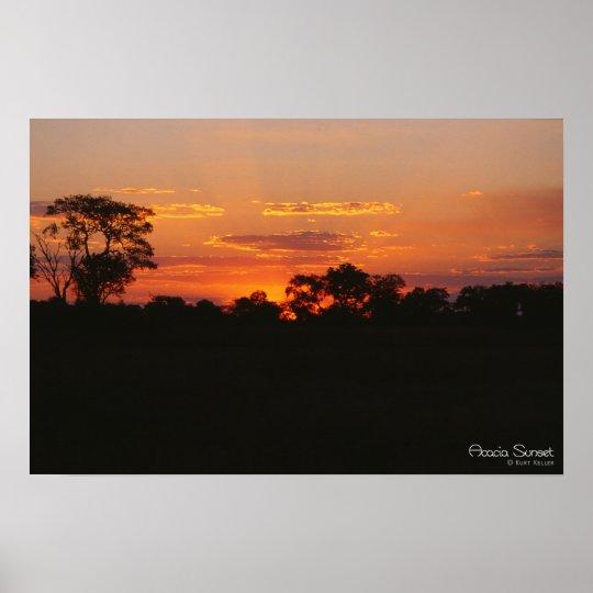 Acacia Sunset Print
