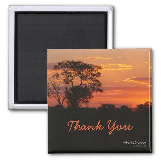 Acacia Sunset Thank You Magnet