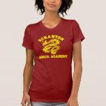 Academia de Scranton Ninja Camisetas