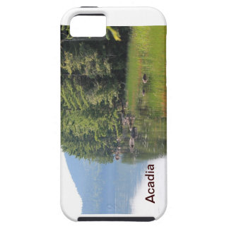 Acadia iPhone 5 Covers