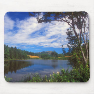 Acadia Long Pond Summer View Mouse Pad