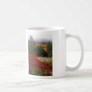 Acadia National Park Foliage Classic White Coffee Mug