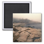 Acadia National Park Fridge Magnets