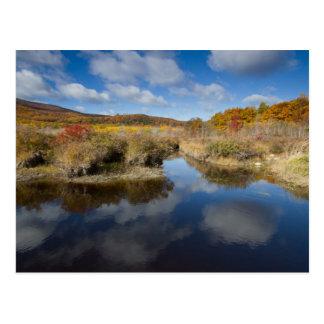 Acadia NP: colores del otoño, reflexiones Postal