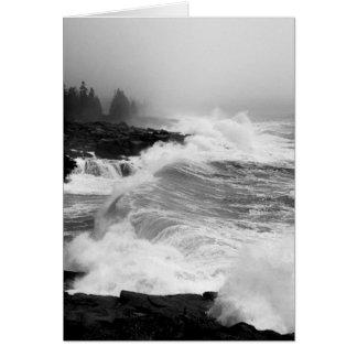 Acadia Surf Notecard - 3